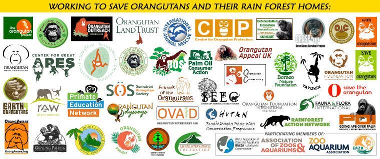 ocw-all-logos