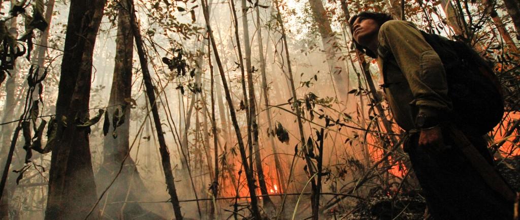 Sabangau forest burning 2_Bernat Ripoll Capilla_OuTrop 2015
