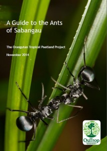 ant guide front cover