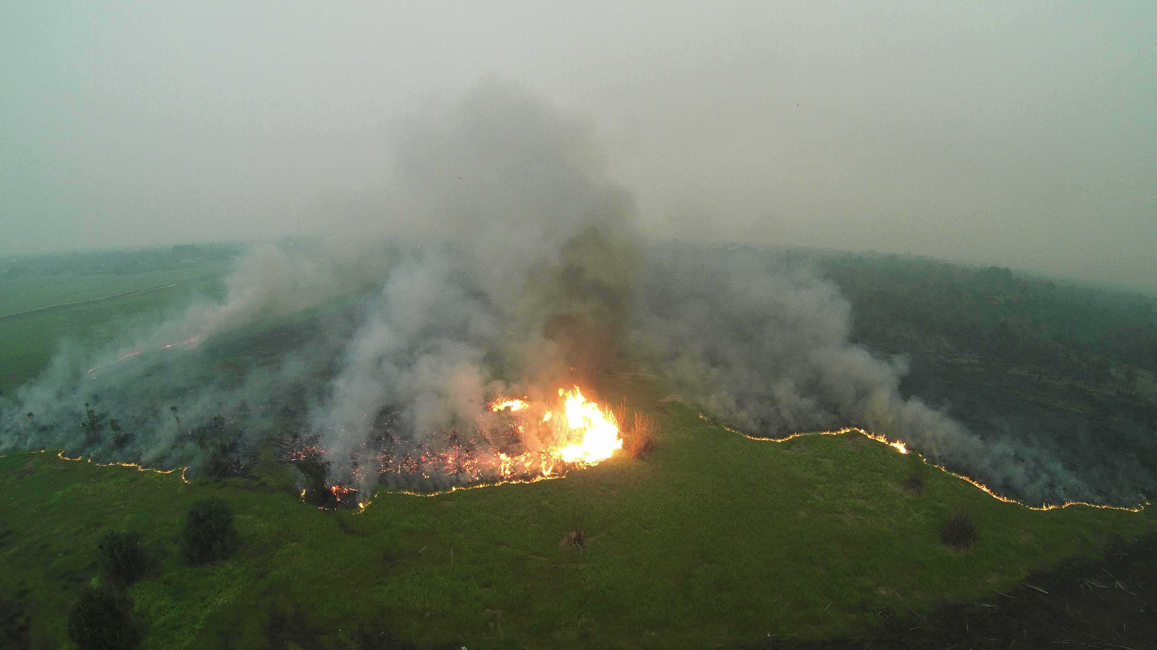 Peatland fire in Sabangau