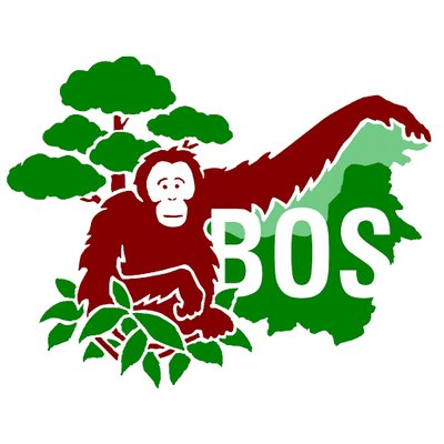 8. BOS Foundation