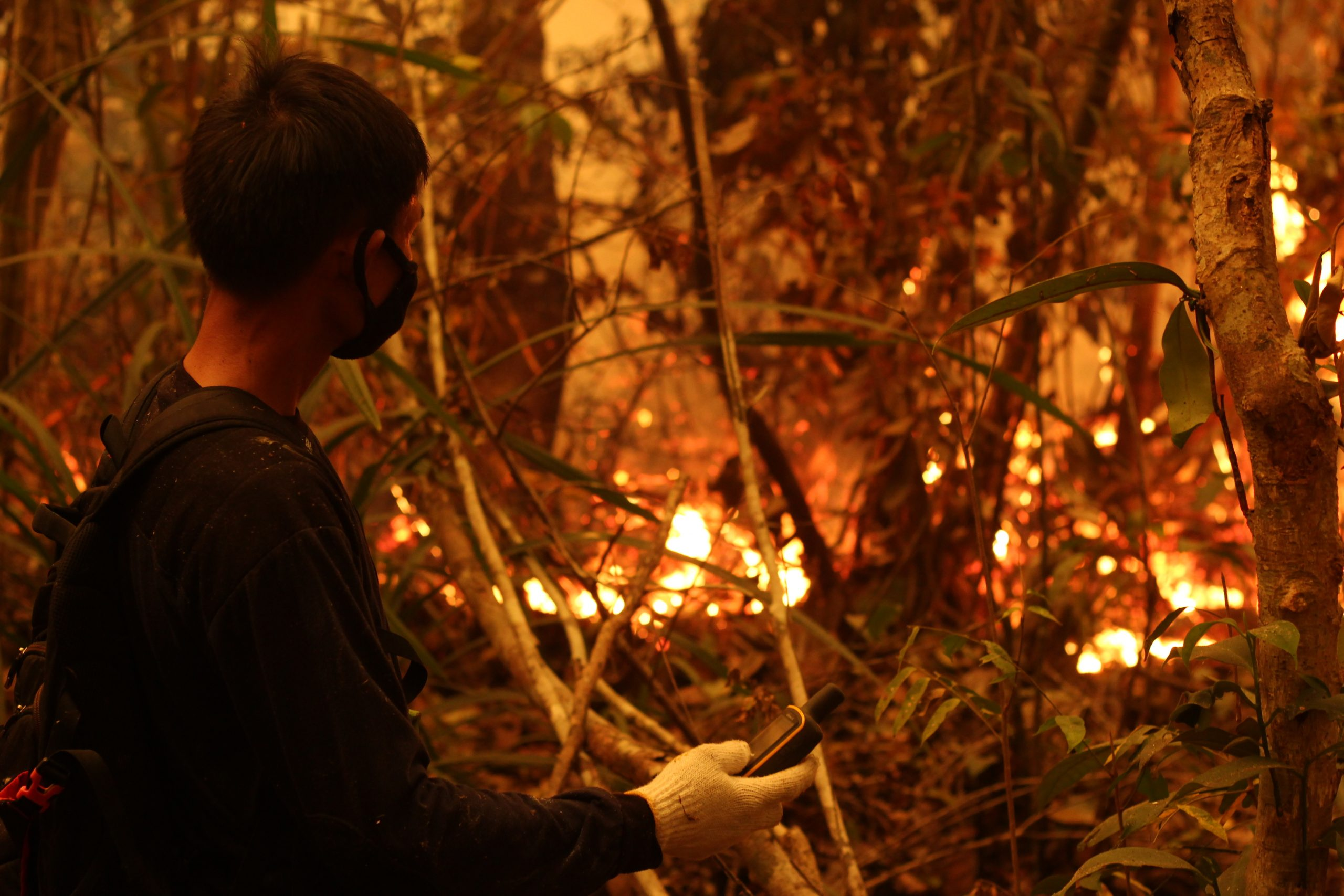 Forest Fires_Sabangau_Alex Allsop_2015 (50)