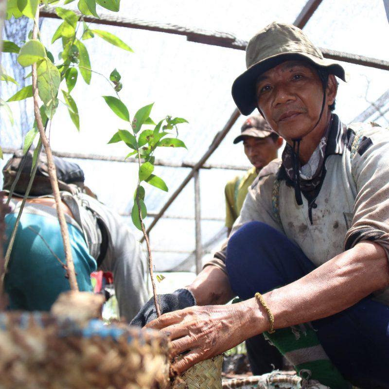 200826_Reforestation_Sebangau_Yohanes Prahara_0181