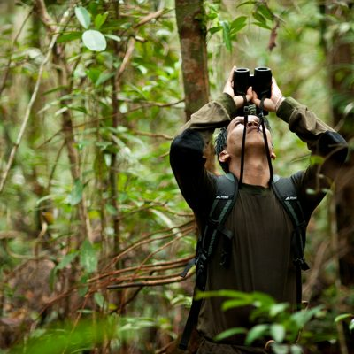 Conservation-research-in-action.-Photo-by-Chris-Owen-_-Borneo-Nature-Foundation