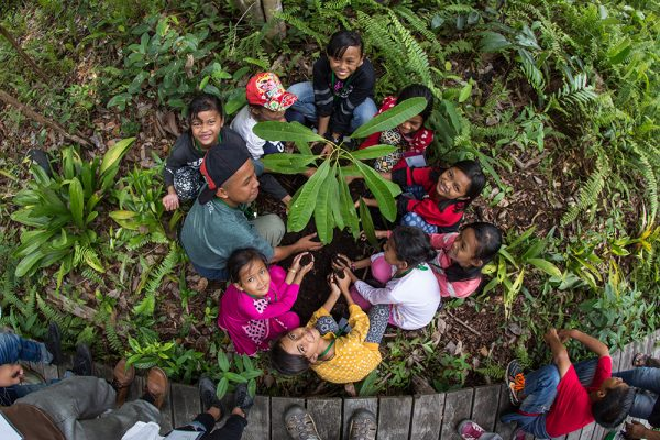 Environmental education_children_school_youth club