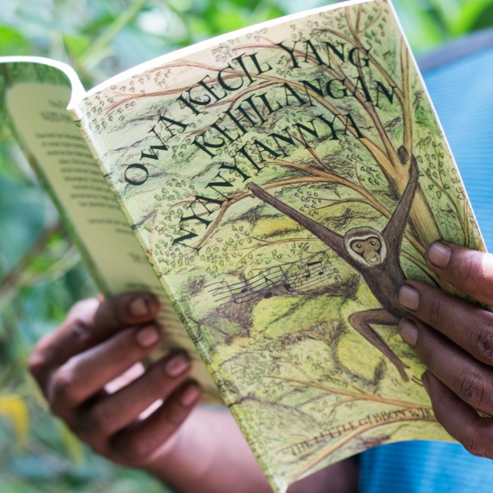 Gibbon story book_education_David Attenborough_book_education