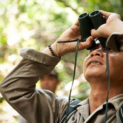 Hendri-Using-Binoculars_Chris-Owen_Sabangau