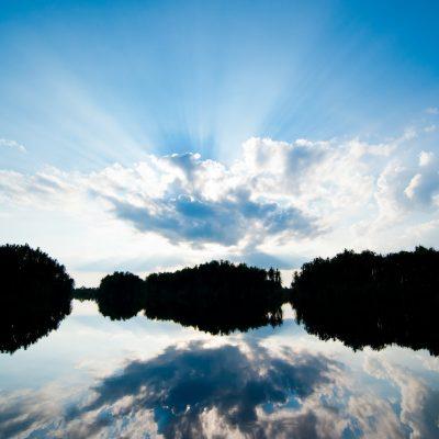 River landscape 4 - Sabangau - Andrew Walmsley - 2012